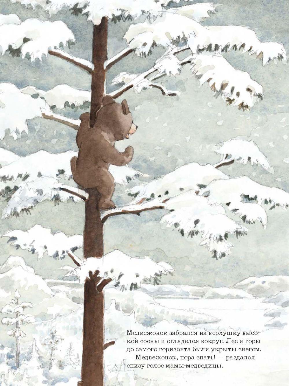 Ложись спать, медвежонок!_img_3