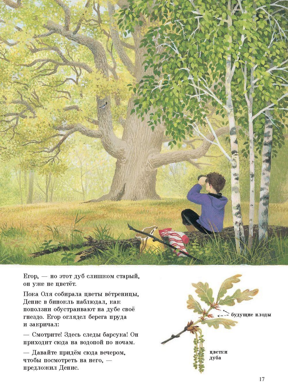 Наше дерево_img_1
