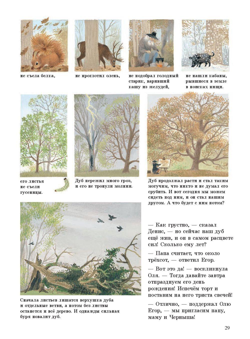 Наше дерево_img_3