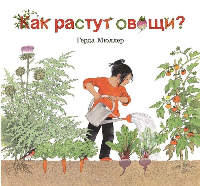 Как растут овощи?_img_0