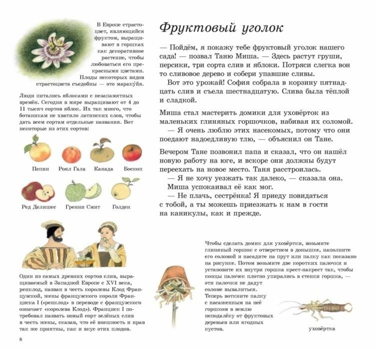 Как растут овощи?_img_2